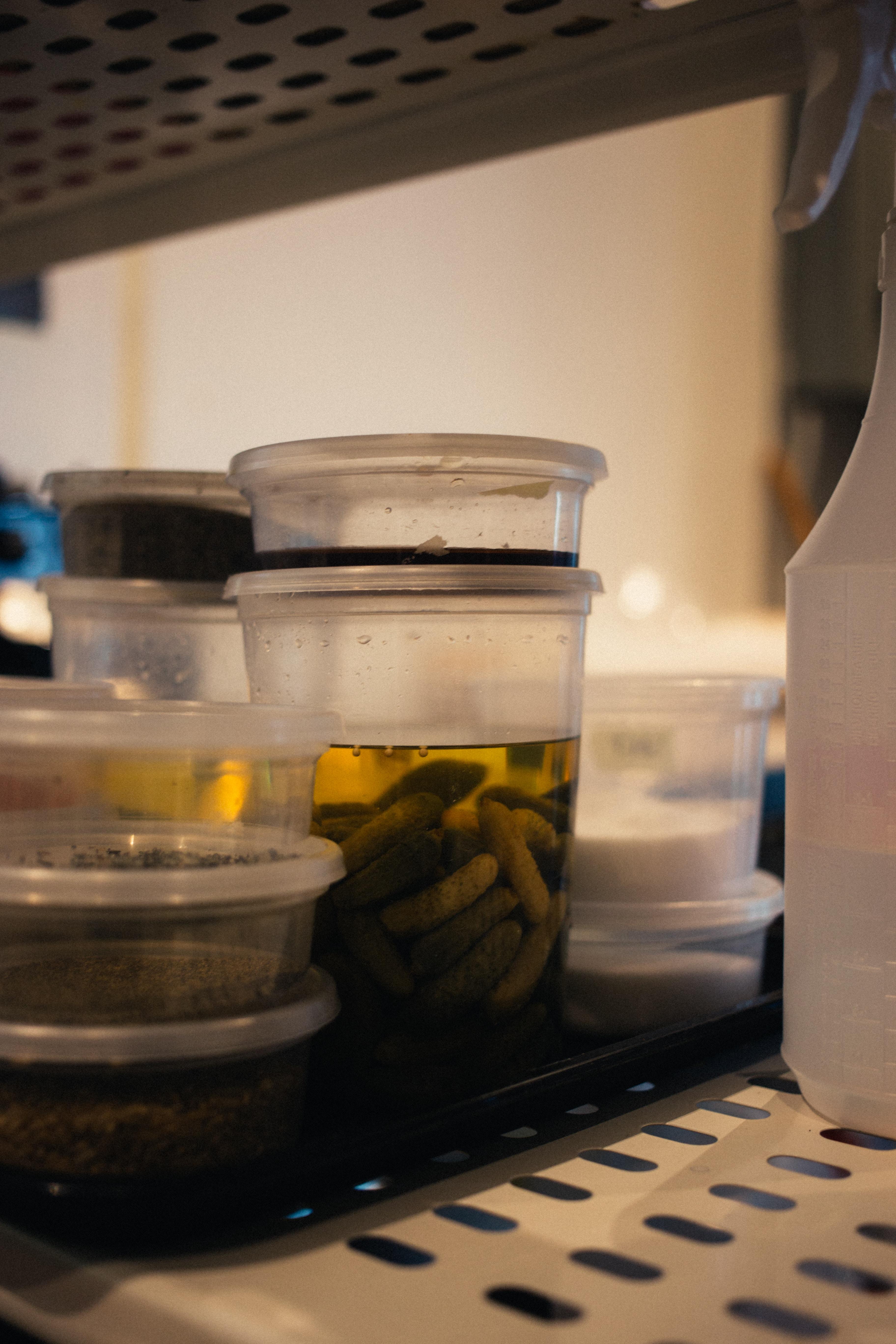 時短をかなえる 冷蔵庫収納の見直し