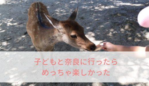 奈良公園のおでかけを子連れで楽しむ4つのポイント