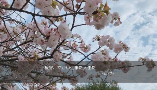 笹部新太郎さんの桜愛が深くて泣きそう